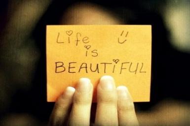 Cuộc đời vẫn đẹp