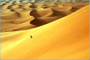 Tôi đi tìm cát