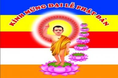 Thánh giáo kính mừng Phật Đản