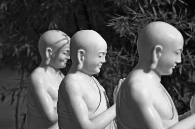 Ðạo đức y sinh từ một quan điểm Phật giáo