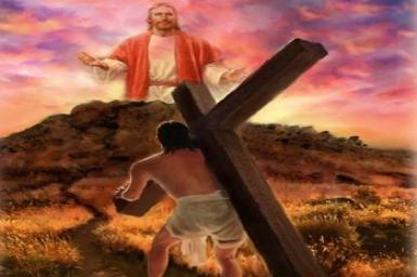Bỏ mình theo Thầy: Tin Mừng CN XXIII bằng hình ảnh