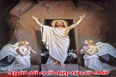 Chúa đã Phục Sinh: Tin Mừng Chúa Phục Sinh bằng hình ảnh