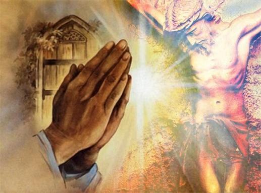 Từ bỏ để theo Chúa: Tin Mừng CN XXIII TN C bằng hình ảnh