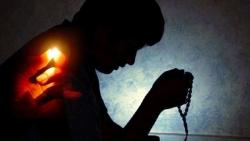 Đức tin: Tin Mừng CN XXVII TN C bằng hình ảnh