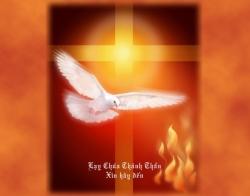 Ngọn lửa Thần Khí: Tin Mừng CN Lễ Hiện Xuống bằng hình ảnh