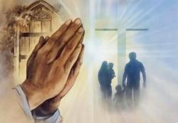 Thiên Chúa quan phòng: Tin Mừng CN VIII TN A bằng hình ảnh