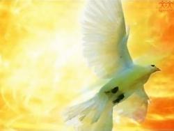 Tin Mừng CN Chúa Thánh Thần Hiện Xuống A bằng hình ảnh