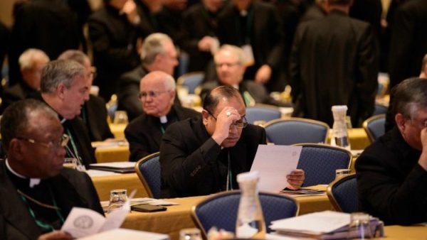 Các Giám mục Hoa Kỳ bác bỏ tin về sự chống đối Đức Giáo hoàng