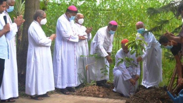 """Giáo hội Bangladesh phát động chiến dịch trồng cây trong Năm """"Laudato Si'"""""""