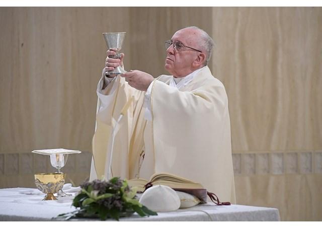 Niềm vui: sống vâng phục, sống chứng nhân, sống cụ thể