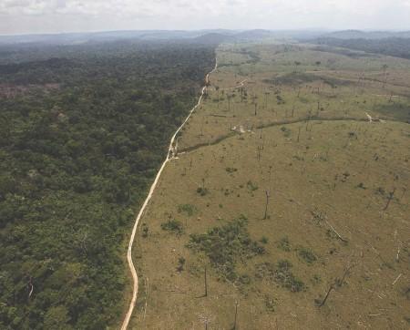 2017: một năm kinh hoàng cho vùng Amazon