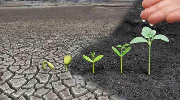 Nhà Giáo dục – Người gieo niềm hy vọng – theo lời dạy của ĐGH Phanxicô