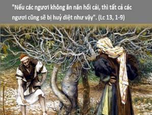 Học hỏi Phúc âm CN III MC C (Lc 13,1-9) - P.1