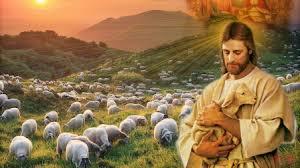 Học hỏi Phúc âm CN IV PS C (Ga 10,27-30) - P.1