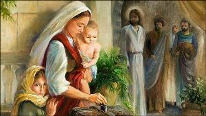 Học hỏi Phúc âm CN XXXII TN B (Mc 12,38-44) - P.1