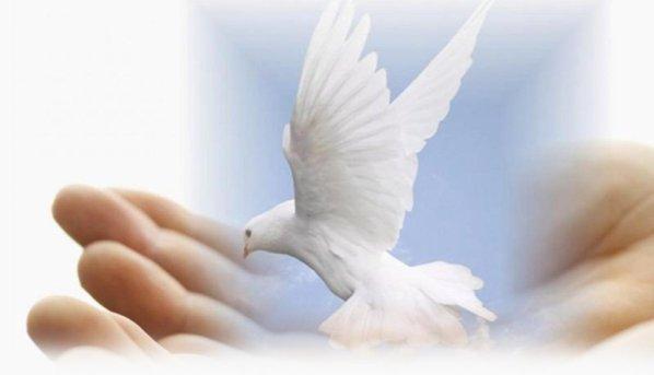 Bình an cho anh em: SN Tin Mừng thứ Ba tuần V PS A (12.05.2020)