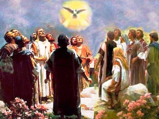 Thánh Thần sẽ dạy cho anh em biết : SN Tin Mừng thứ Bảy tuần XXVIII TN B (20.10.2018)