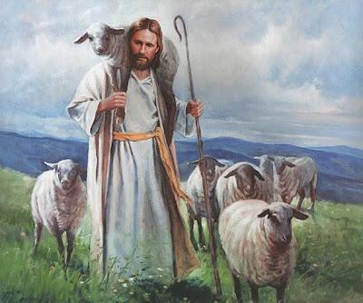 Xin chung vui, vì tôi đã tìm được con chiên đã mất: SN TM thứ Sáu - Thánh Tâm Chúa Giêsu (28.06.2019)