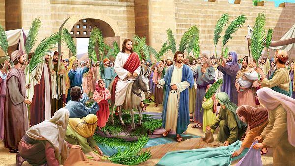 Xin đừng theo ý con: SN Tin Mừng Chúa nhật Lễ Lá, B- Rước lá (28.03.2021)