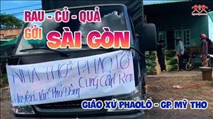 Hãy đến mà xem: Rau - củ - quả gởi Sài Gòn
