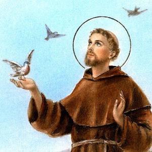 Thánh Phanxicô Assisi, con người của hòa bình (tt)
