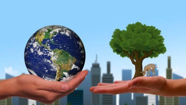 Sứ điệp chung của ĐGH và lãnh đạo Chính Thống giáo và Anh giáo mời gọi dấn thân vì thiên nhiên