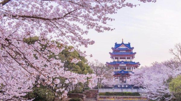 """Đức cha Quách Hi Cẩm quyết không gia nhập """"Giáo hội độc lập"""" của Trung Quốc"""