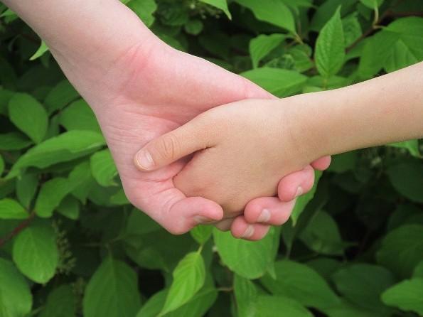 Vai trò của tình dục trong đời sống vợ chồng Kitô hữu