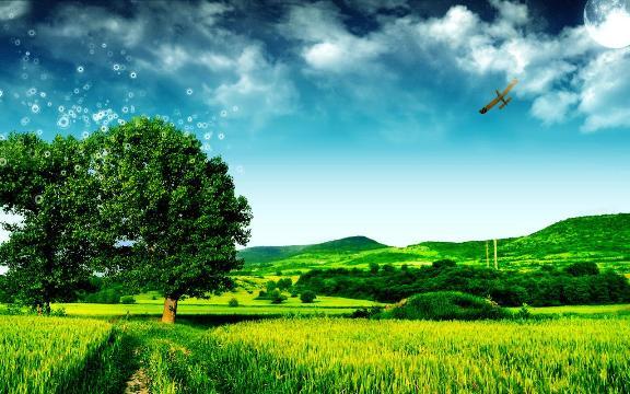 Đường đi của gió (Giải Viết Văn Đường Trường 2017)