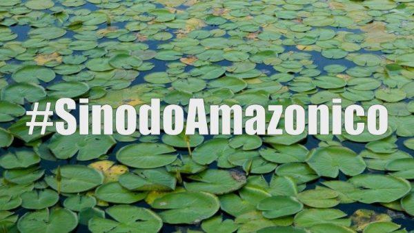 Công bố tài liệu làm việc của Thượng HĐGM Amazzonia