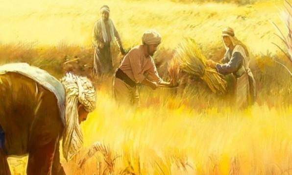 Một thần học truyền giáo cho hôm nay (2)