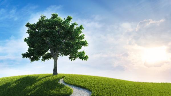 Từ Tam Tài học thuyết hợp tụ đến Kitô giáo, đạo của tương lai