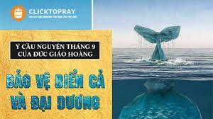 Ý cầu nguyện tháng 09/2019: Bảo vệ các đại dương