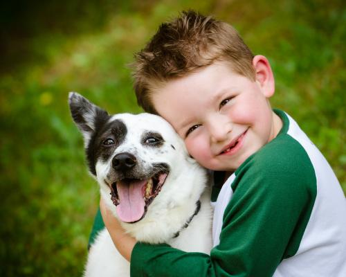 Lòng yêu thú vật với ý thức sinh thái
