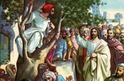Học hỏi Phúc âm CN XXXI TN C  (Lc 19,1-10) - P.1