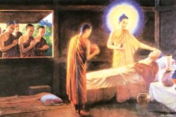 Nương tựa ``đại y vương``, chuyển hóa khổ đau