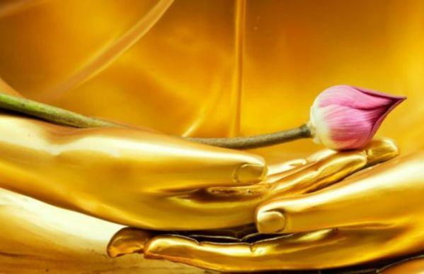 Giết gì được Phật khen?