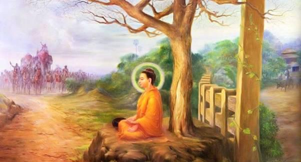 Đức Phật và cội cây quê nhà