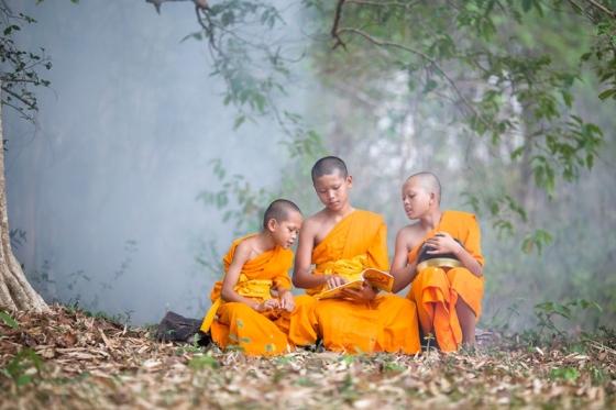 Những thanh niên Thái Lan xuất gia báo hiếu