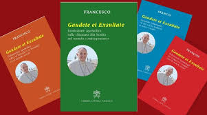 Giới thiệu sách: Tông huấn Gaudete et Exsultate - về lời mời gọi nên thánh trong thế giới hôm nay
