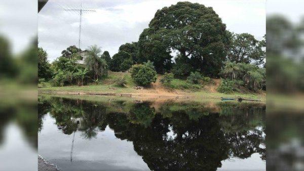 ĐGH Phanxicô sẽ có các quyết định tốt cho THĐGM vùng Amazzonia