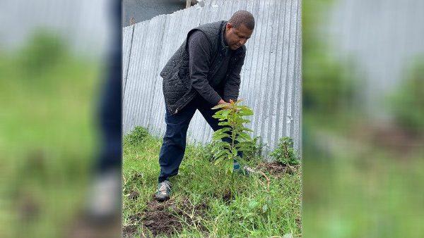Chính quyền và Giáo hội Etiopia phát động phong trào trồng 353 triệu cây xanh