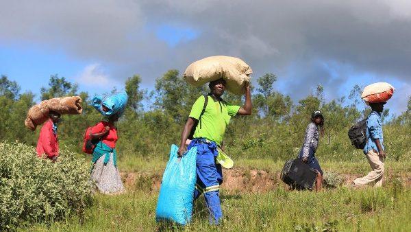 Tình liên đới của ĐGH dành cho những người đói khổ ở Zambia