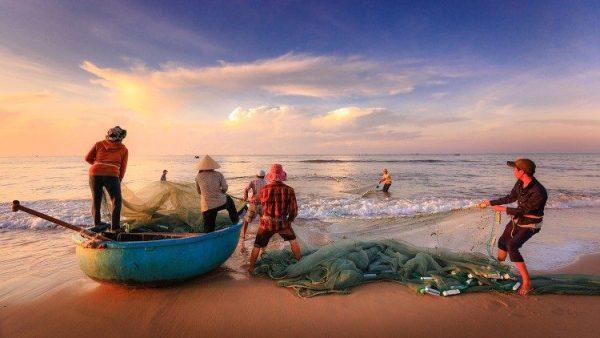 ĐHY Turkson kêu gọi bảo vệ nhân quyền và quyền lao động của ngư dân