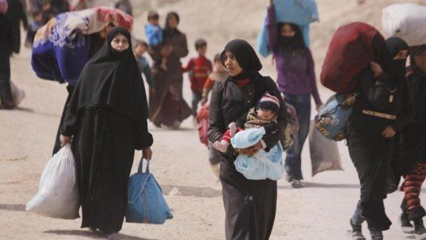 ĐHY Mario Zenari: Năm nay, Giáng Sinh ở Syria nghèo như Giáng Sinh Bêlem xưa