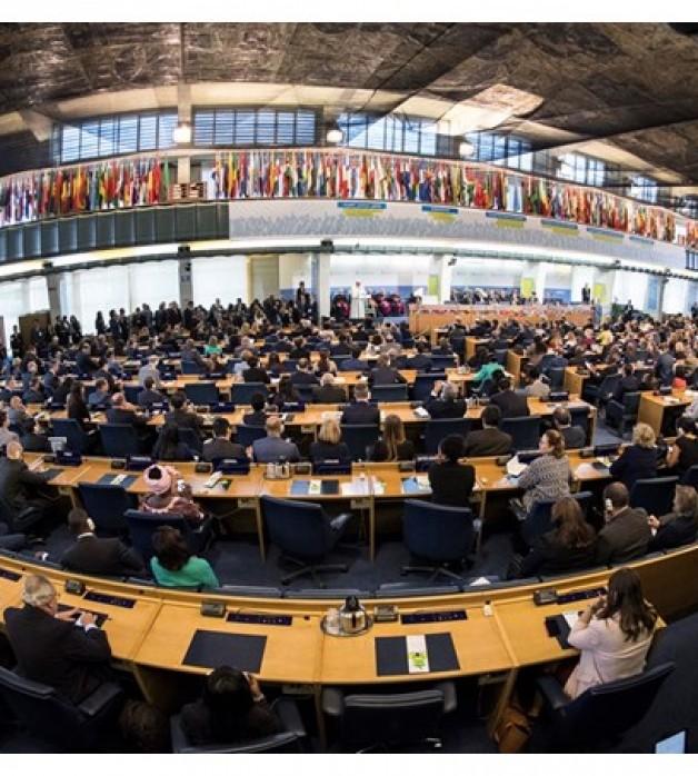 Tòa Thánh kêu gọi bảo vệ công nhân ngành ngư sản