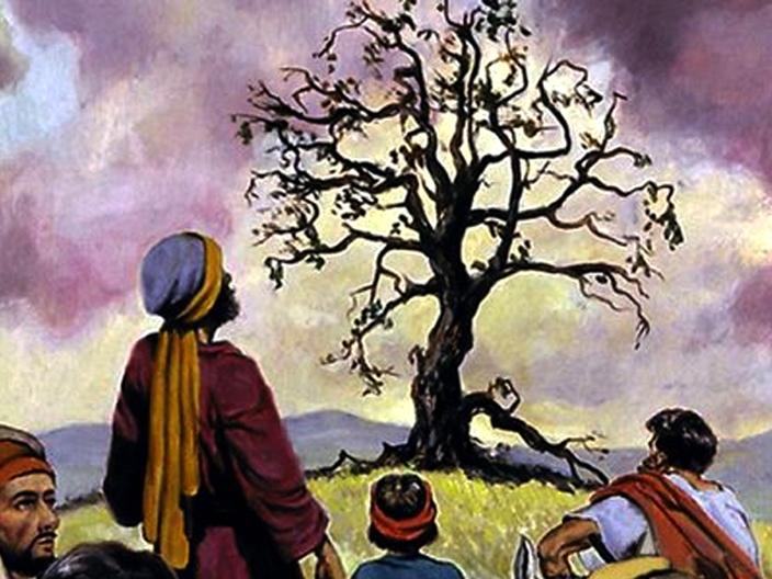 Phúc Âm Chúa nhật III Mùa Chay bằng hình ảnh