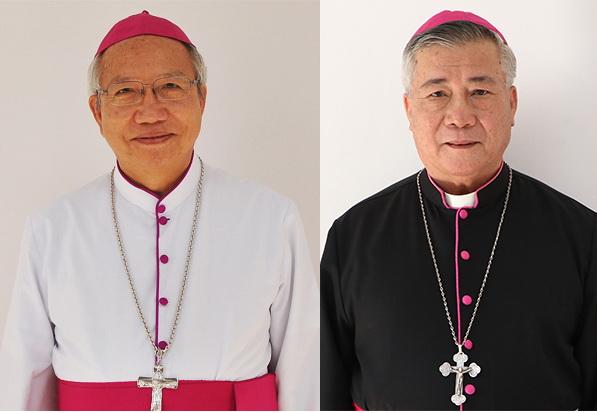 ĐGH Phanxicô thiết lập giáo phận Hà Tĩnh, bổ nhiệm GM GP Vinh và Hà Tĩnh