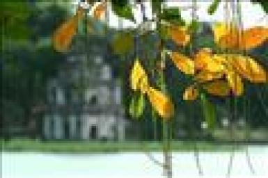 Sắc vàng mùa thu - Gm. Giuse Vũ Văn Thiên