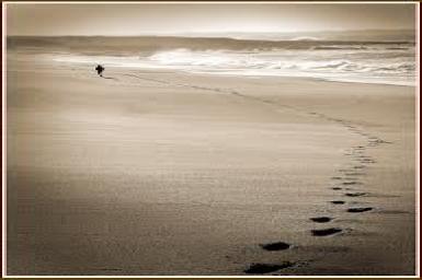 Bước chân đạo hạnh